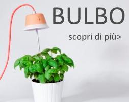 bulbo light