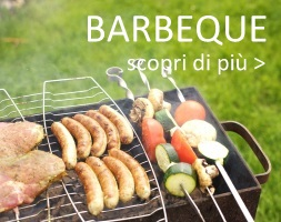 barbecue bbq barbeque shop online